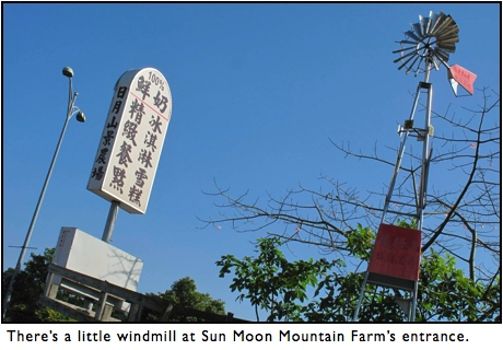Bike or Hike to Baguashan from Sun Moon Farm