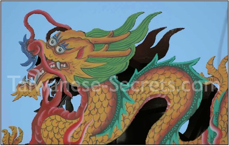 Chinese Dragon Art gallery