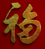 gold chinese character symbol on red door