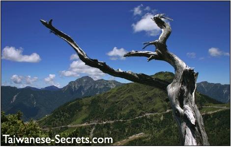 Nantou County Travel Guide