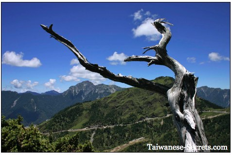 mountains in taiwan picture